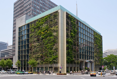 This building is using green vines to decrease its carbon footprint, its not hard and it looks great!